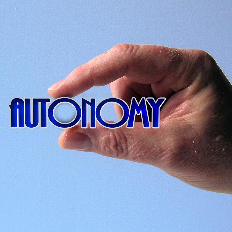 autonomy as a motivator